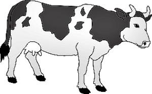 Cow Print Stencil